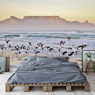 Zelfklevend fotobehang op maat - Strand Kaapstad - Zuid Afrika