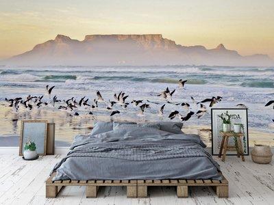 Wandtapete Strand Kapstadt