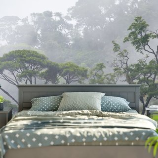 Zelfklevend fotobehang - Misty Forest