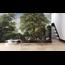 Walldesign56 Selbstklebende Fototapete - Blick auf den Wald