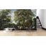 Walldesign56 Zelfklevend fotobehang - Bosgezicht