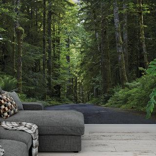 Zelfklevend fotobehang op maat - Weg door het bos