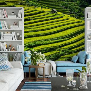 Selbstklebende Fototapete angepasst - Reisfelder 2