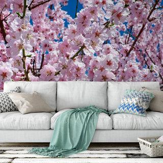 Zelfklevend fotobehang op maat - Japanse Kersenboom 2