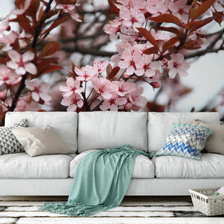 Zelfklevend fotobehang op maat - Japanse Kersenboom 3