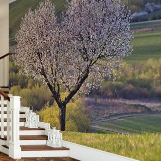 Selbstklebende Fototapete angepasst -  Japanischer Kirschbaum 4