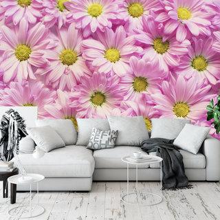 Selbstklebende Fototapete angepasst - Rosa Gänseblümchen