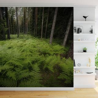 Selbstklebende Fototapete angepasst - Dschungel 6