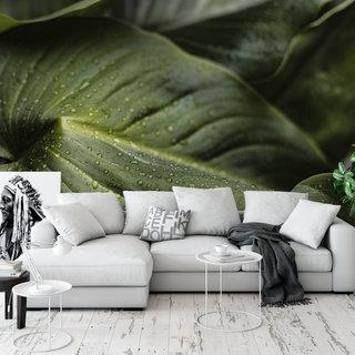 Self-adhesive photo wallpaper custom size - Green leaves 3