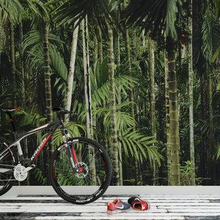 Zelfklevend fotobehang op maat - Palmboom 4