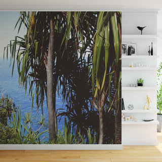 Self-adhesive photo wallpaper custom size -  Palm tree 5