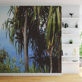 Zelfklevend fotobehang op maat - Palmboom 5