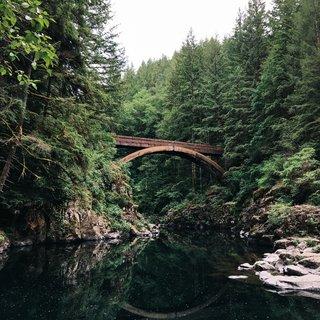 Selbstklebende Fototapete angepasst -  Brücke im Wald