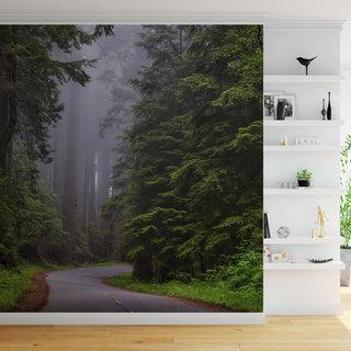 Selbstklebende Fototapete angepasst -  Wald 2