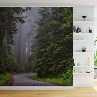 Self-adhesive photo wallpaper custom size - Forest 2