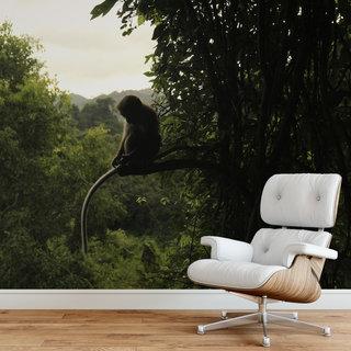 Selbstklebende Fototapete angepasst - Affe