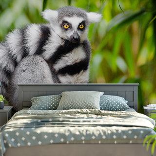 Self-adhesive photo wallpaper custom size - Ring-tailed lemur