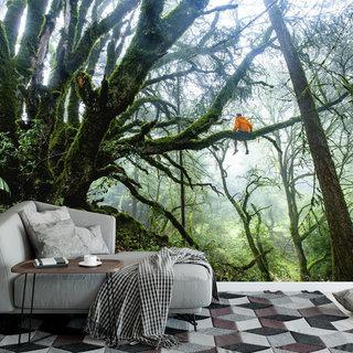 Selbstklebende Fototapete angepasst - Mann im Baum