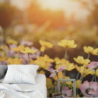 Selbstklebende Fototapete angepasst - Blumen in der Sonne