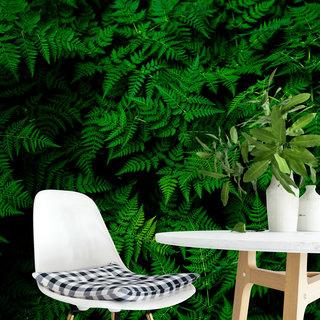Selbstklebende Fototapete angepasst - Pflanzen 2