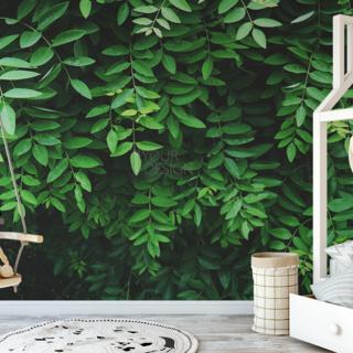 Self-adhesive photo wallpaper custom size - Green leaves 2