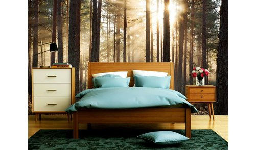 Self-adhesive photo wallpaper custom size - Forest sunrise 1