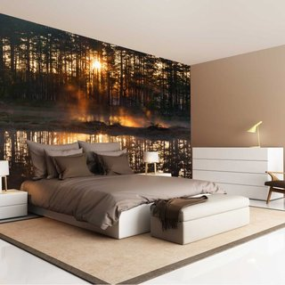 Zelfklevend fotobehang op maat - Bos zonsondergang