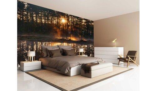 Self-adhesive photo wallpaper custom size - Forest Sundown