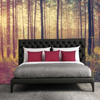 Self-adhesive photo wallpaper - Forest Sundown - Autumn 1