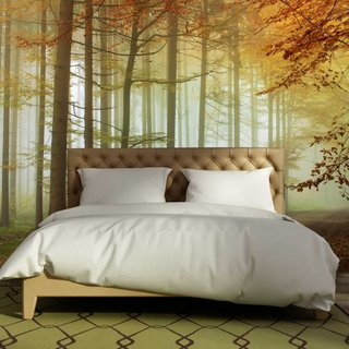 Self-adhesive photo wallpaper custom size - Forest Sundown - Autumn 2
