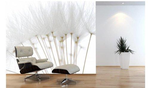 Self-adhesive photo wallpaper custom size - Dandelion