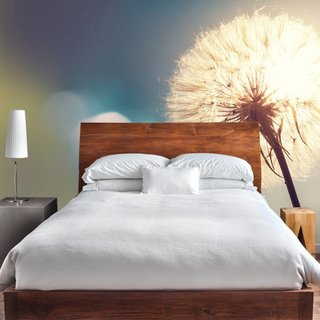 Self-adhesive photo wallpaper - Dandelion 2
