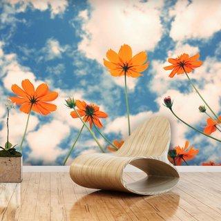 Selbstklebende Fototapete angepasst - Kosmos Blume 1