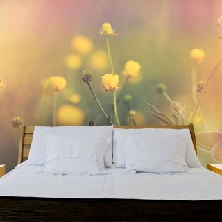 Self-adhesive photo wallpaper custom size - Cosmos Flower 2