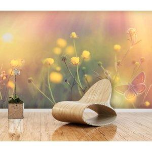 Fotobehang Cosmos Flower 2