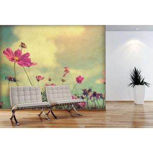 Fotobehang Cosmos Flower Vintage