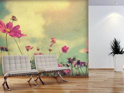 Mural Cosmos Flower Vintage