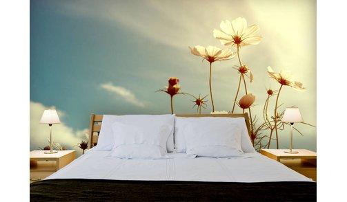 Self-adhesive photo wallpaper custom size - Cosmos Flower 3