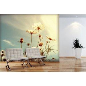 Mural Kosmos-Blumen-3