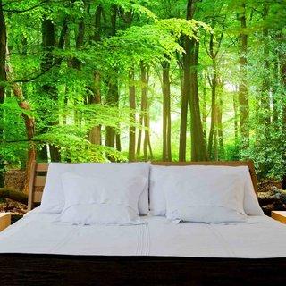 Selbstklebende Fototapete angepasst - Wald Sonnenaufgang 4