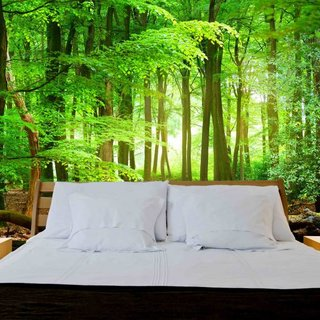 Self-adhesive photo wallpaper custom size - Forest sunrise 4