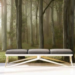 Selbstklebende Fototapete - Wald mit Reh