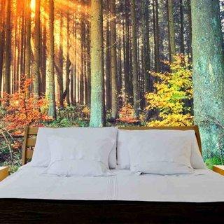 Selbstklebende Fototapete angepasst - Wald Herbst
