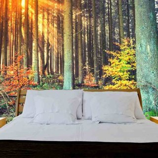 Zelfklevend fotobehang op maat - Bos Herfst