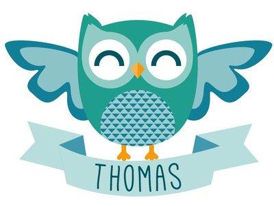 Birth Sticker Owl Boy