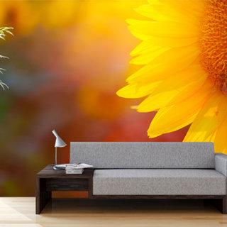 Self-adhesive photo wallpaper custom size - Sunflower