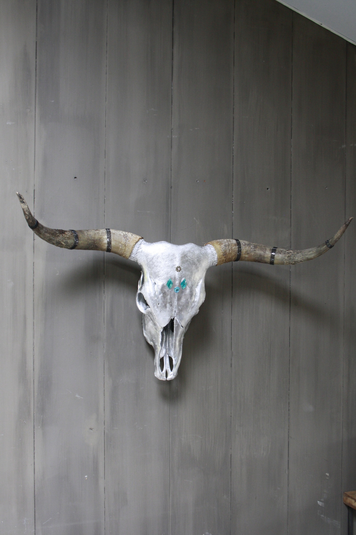 Longhorn Schedel Zilver Met Hoorns 100 x 43 cm - Copy-2