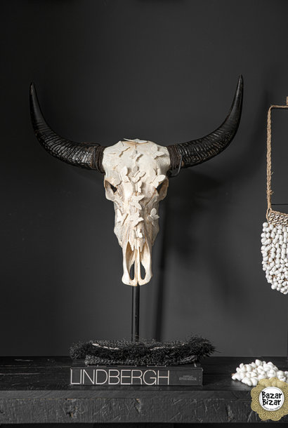 Buffel schedel met hoorns - SKULL- Wit - 65 cm