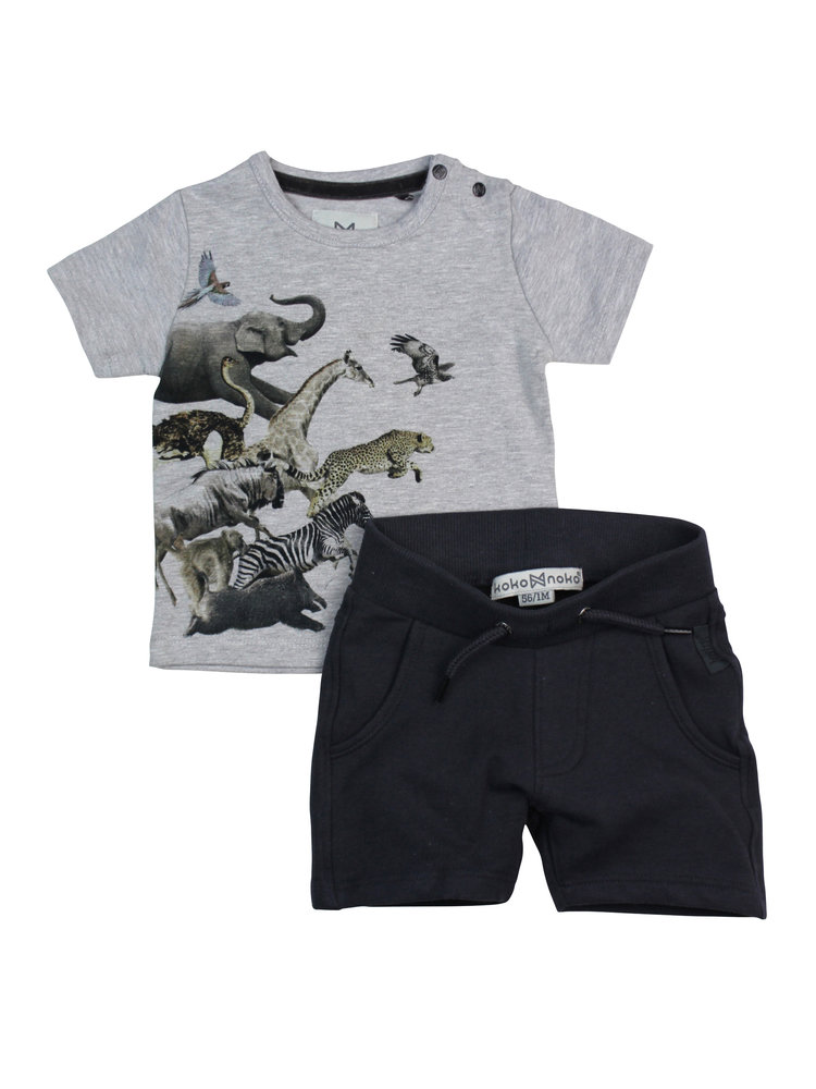 Boys 2-piece set with short and gray T-shirt   37A-30871