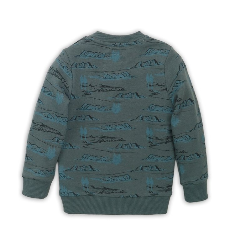 Boys sweater green with print | D36853-37